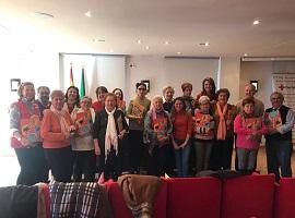 Meetings Red Cross Elderly 2017